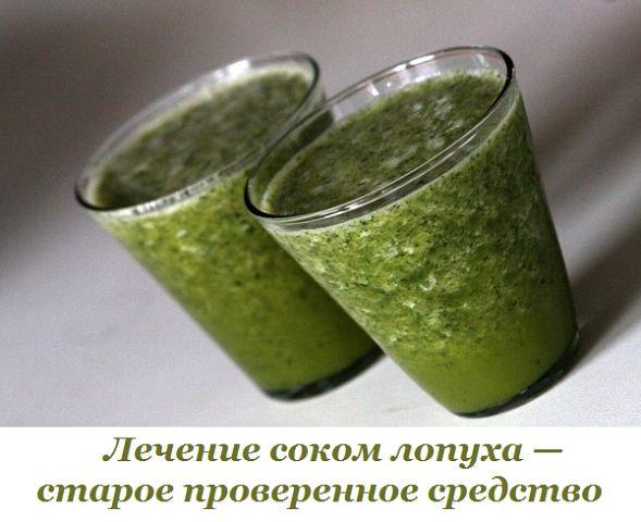 Лечение соком лопуха — старое проверенное средство