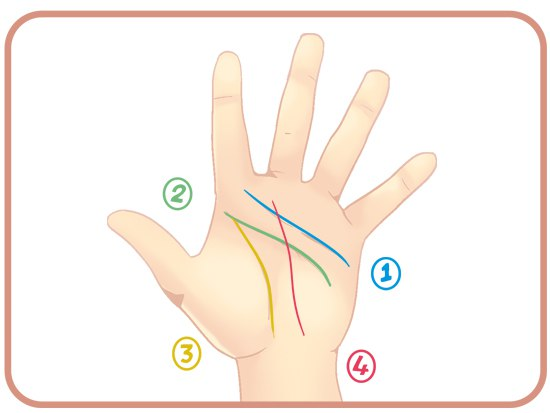 Как читать линии на руках